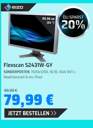 EIZO FLEXSCAN S2431W-GY